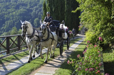 Arriving on a horse carriage